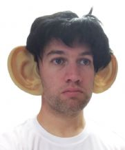 Gary Lineker/Gareth Bale Big Ears and Wig Fancy Dress